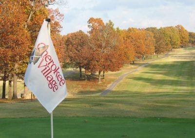 Close Up of a Golf Course Flag with Course in Background
